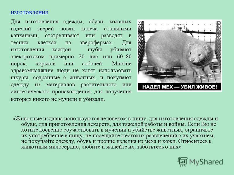 «Животные издавна используются человеком в пищу, для изготовления одежды и обуви, для приготовления лекарств, для тяжелой работы и войны. Если Вы не хотите косвенно соучаствовать в мучении и убийстве животных, ограничьте их употребление в пищу, не по
