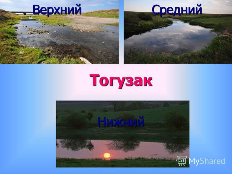 Тогузак СреднийВерхний Нижний