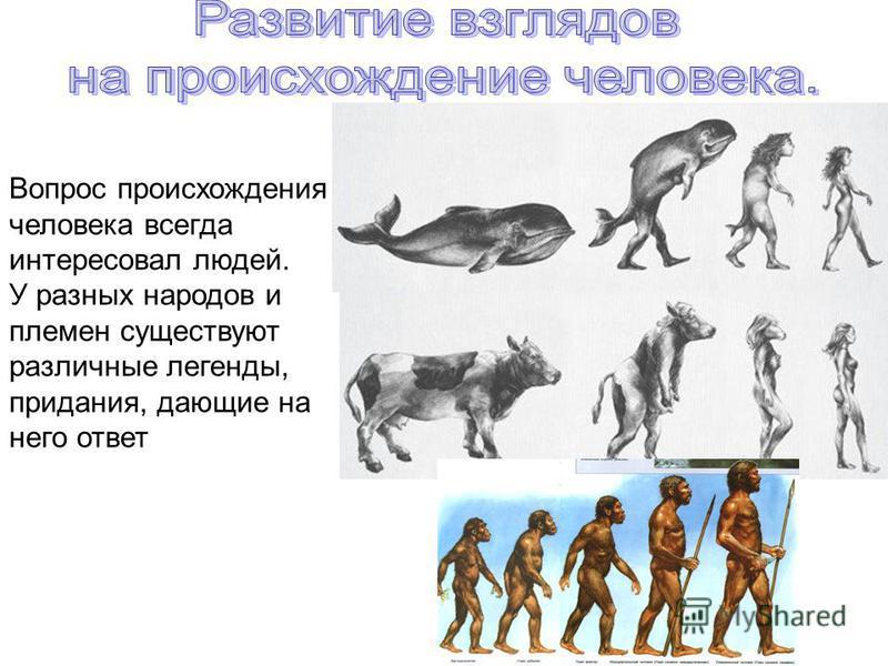 Вопрос происхождения человека всегда интересовал людей. У разных народов и племен существуют различные легенды, придания, дающие на него ответ