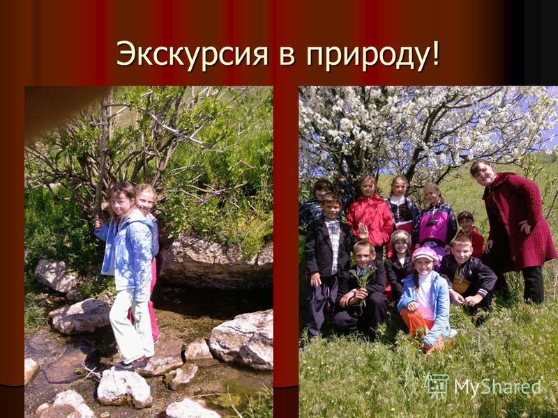 Экскурсия в природу!