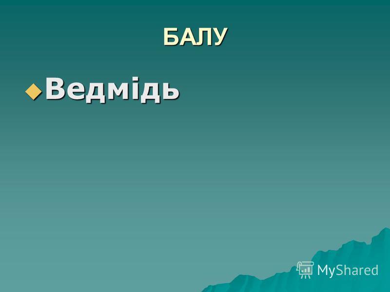 БАЛУ Ведмідь Ведмідь