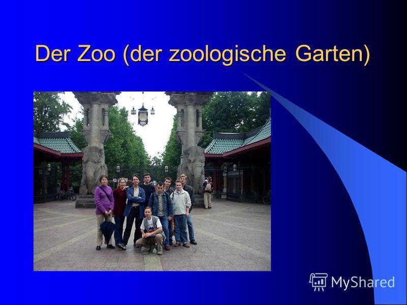 Der Zoo (der zoologische Garten)