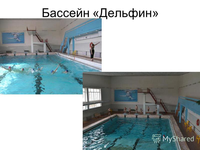 Бассейн «Дельфин»