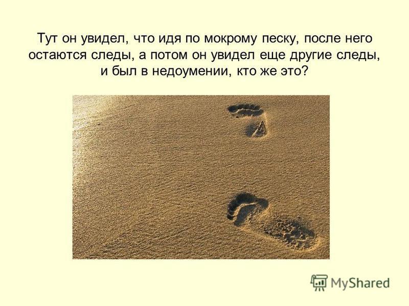 Тут он увидел, что идя по мокрому песку, после него остаются следы, а потом он увидел еще другие следы, и был в недоумении, кто же это?