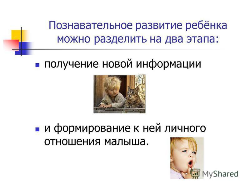 Познавательное развитие ребёнка можно разделить на два этапа: получение новой информации и формирование к ней личного отношения малыша.