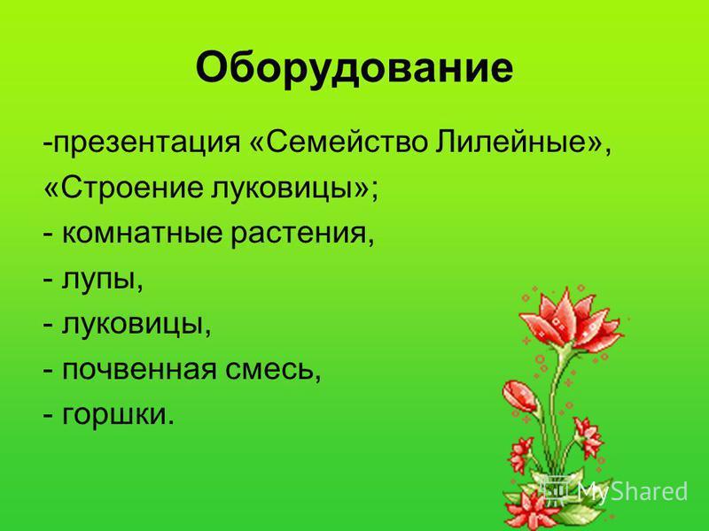 Оборудование -презентация «Семейство Лилейные», «Строение луковицы»; - комнатные растения, - лупы, - луковицы, - почвенная смесь, - горшки.