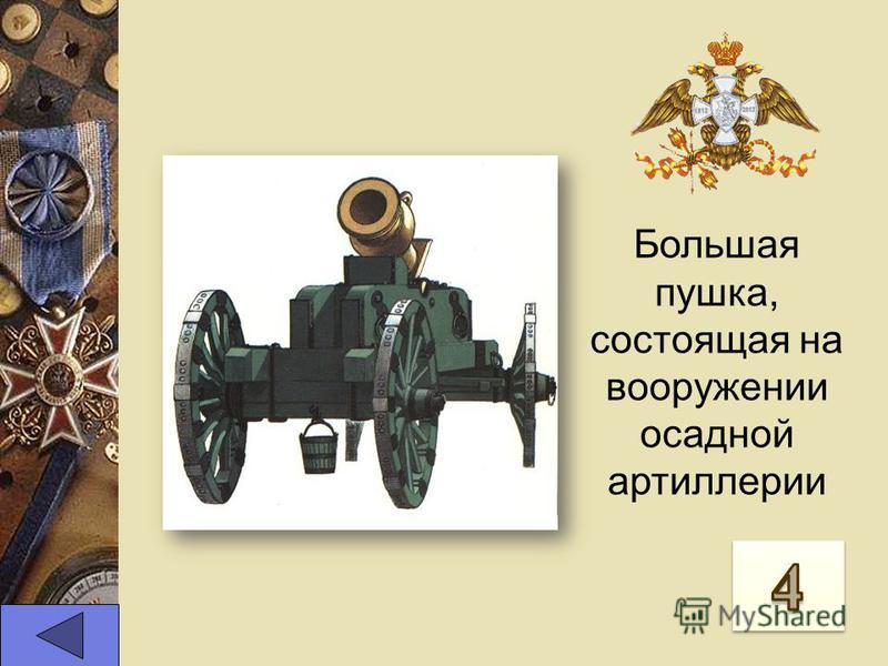 Большая пушка, состоящая на вооружении осадной артиллерии