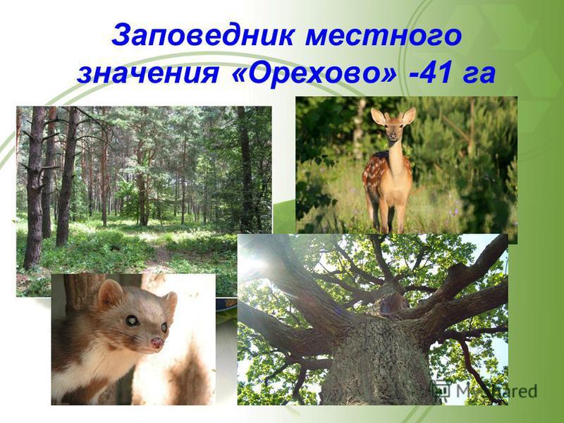 Заповедник местного значения «Орехово» -41 га