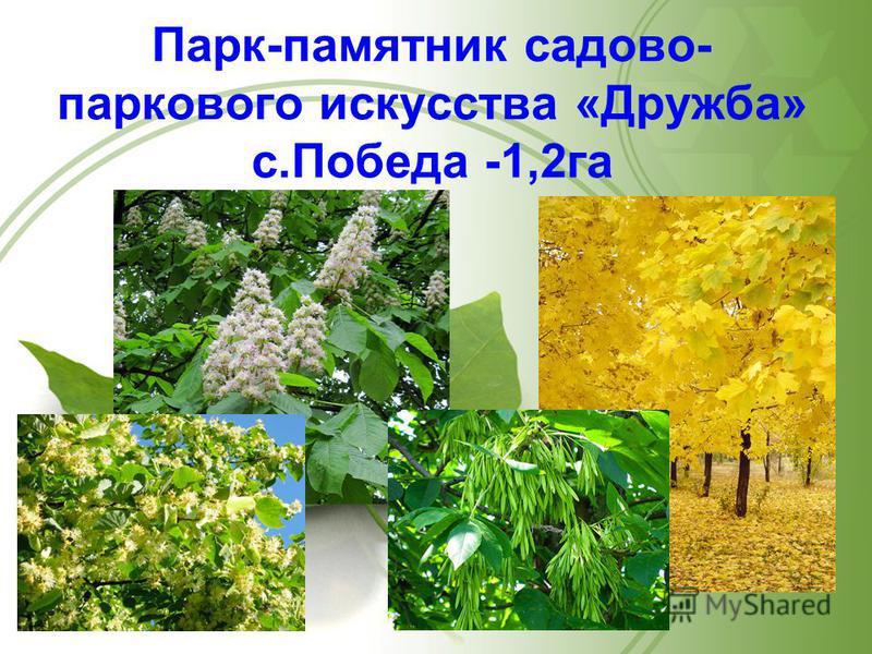 Парк-памятник садово- паркового искусства «Дружба» с.Победа -1,2 га