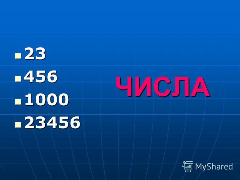 ЧИСЛА 23 23 456 456 1000 1000 23456 23456