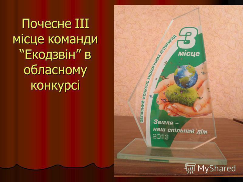 Почесне ІІІ місце команди Екодзвін в обласному конкурсі