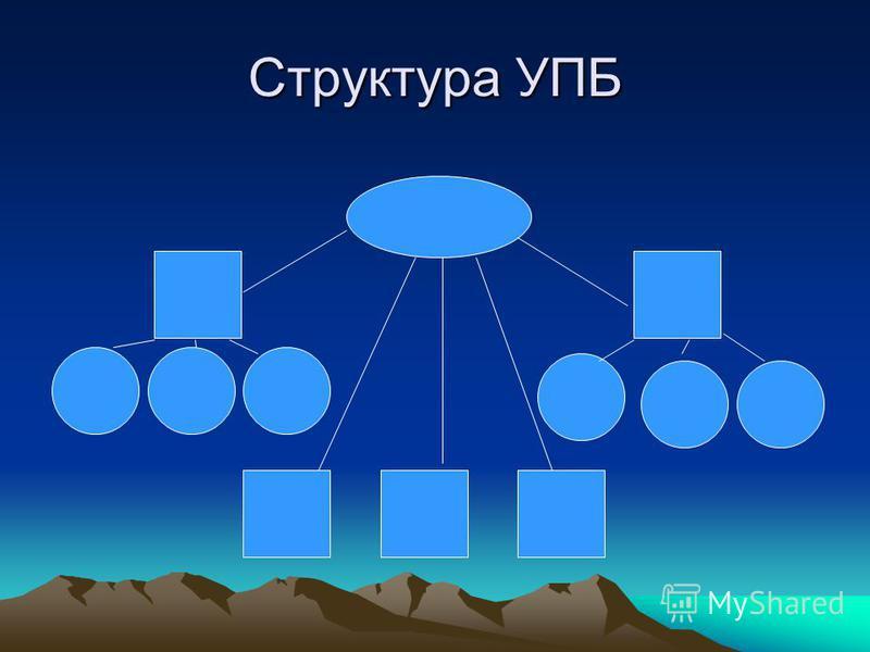 Структура УПБ