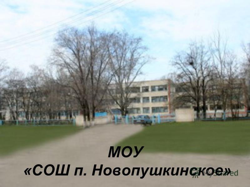 МОУ «СОШ п. Новопушкинское»