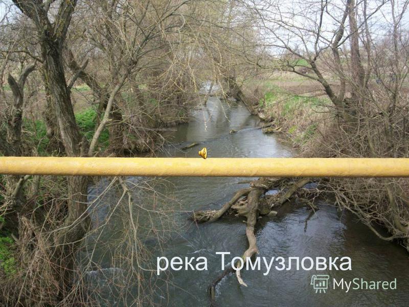 река Томузловка