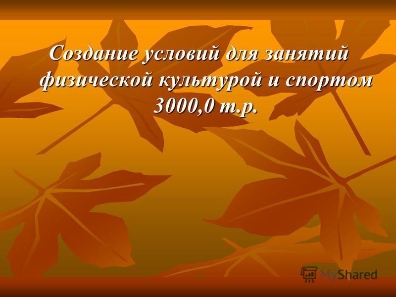 Создание условий для занятий физической культурой и спортом 3000,0 т.р.