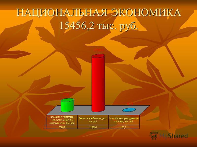 НАЦИОНАЛЬНАЯ ЭКОНОМИКА 15456,2 тыс. руб.