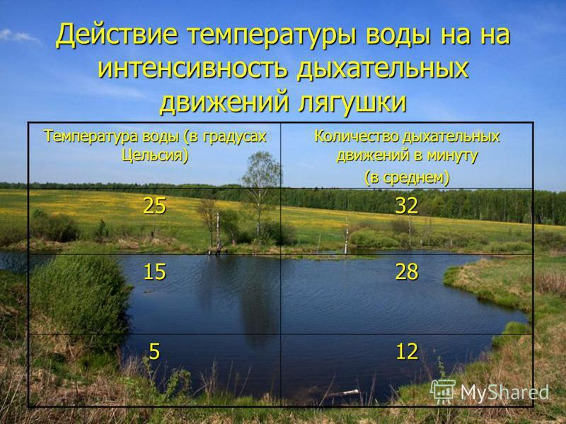 Действие температуры воды на на интенсивность дыхательных движений лягушки Температура воды (в градусах Цельсия) Количество дыхательных движений в минуту (в среднем) 2532 1528 512