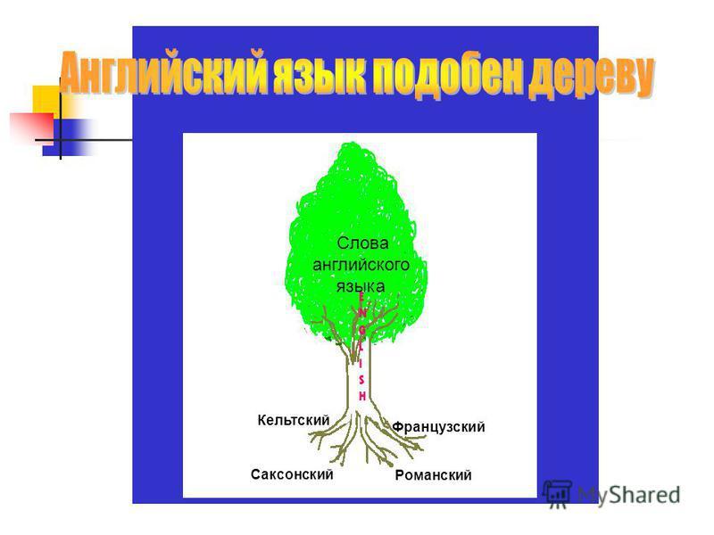 Слова английского языка ENGLISHENGLISH Кельтский Саксонский Французский Романский