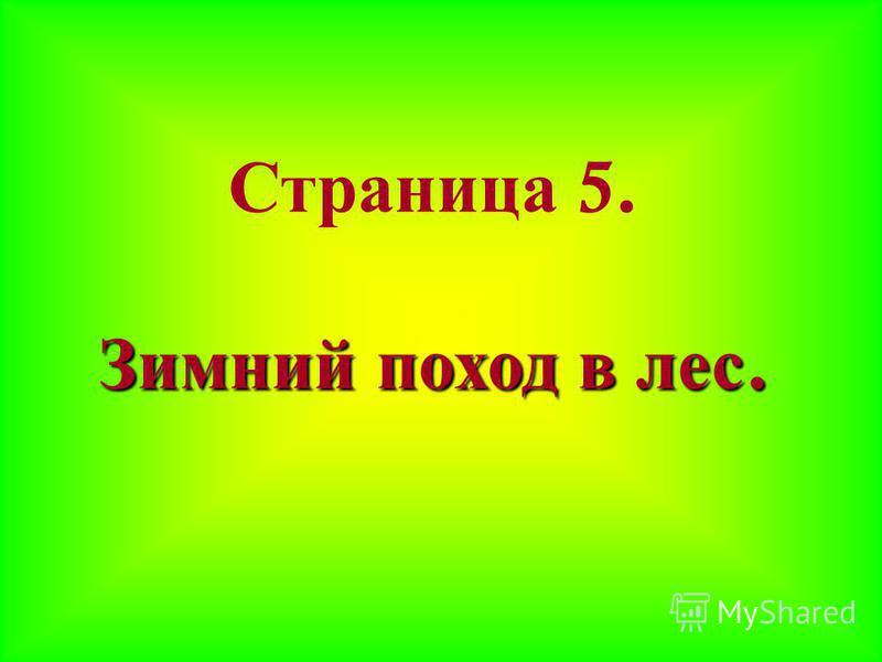 Страница 5. Зимний поход в лес.