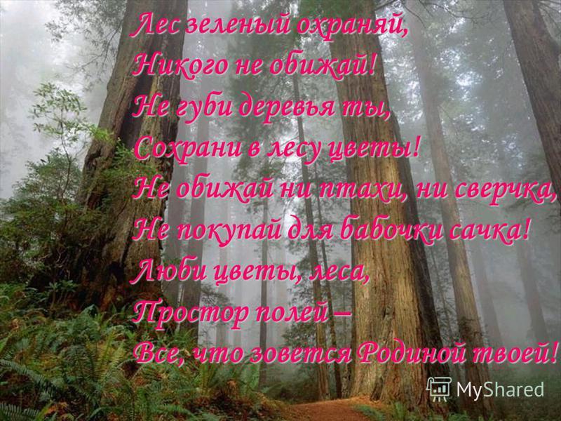 Лес зеленый охраняй, Никого не обижай! Не губи деревья ты, Сохрани в лесу цветы! Не обижай ни птахи, ни сверчка, Не покупай для бабочки сачка! Люби цветы, леса, Простор полей – Все, что зовется Родиной твоей!