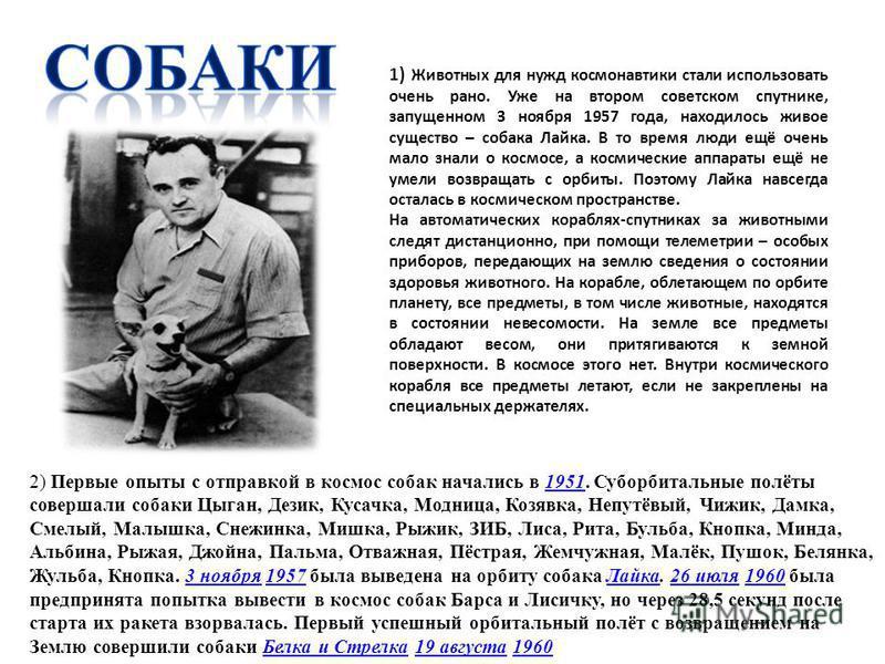 1) Животных для нужд космонавтики стали использовать очень рано. Уже на втором советском спутнике, запущенном 3 ноября 1957 года, находилось живое существо – собака Лайка. В то время люди ещё очень мало знали о космосе, а космические аппараты ещё не