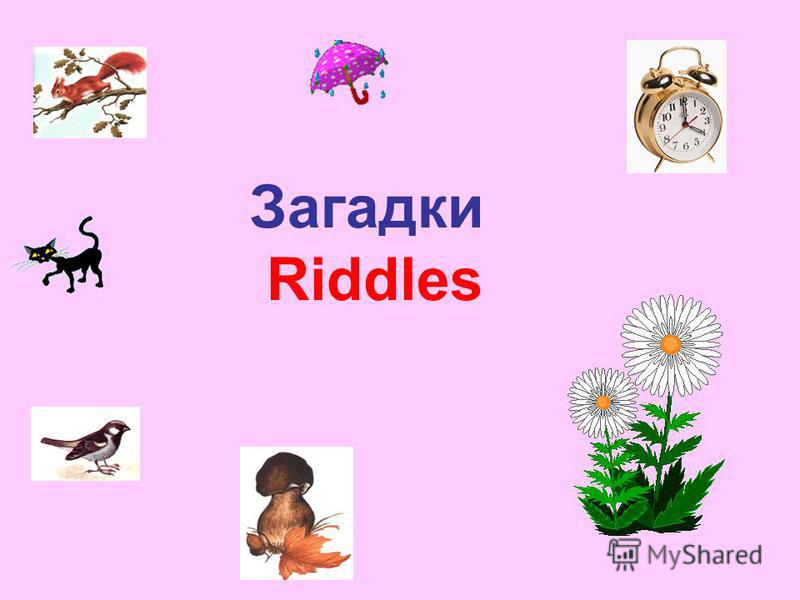 Загадки Riddles