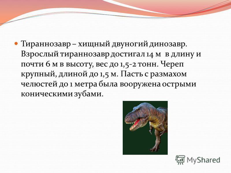 Тираннозавр – хищный двуногий динозавр. Взрослый тираннозавр достигал 14 м в длину и почти 6 м в высоту, вес до 1,5-2 тонн. Череп крупный, длиной до 1,5 м. Пасть с размахом челюстей до 1 метра была вооружена острыми коническими зубами.