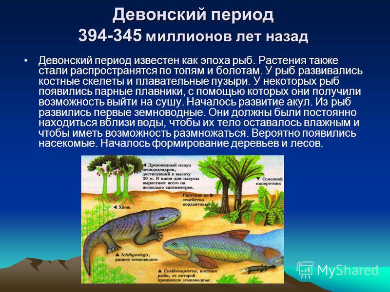 Девонский период 394-345 миллионов лет назад Девонский период известен как эпоха рыб. Растения также стали распространятся по топям и болотам. У рыб развивались костные скелеты и плавательные пузыри. У некоторых рыб появились парные плавники, с помощ