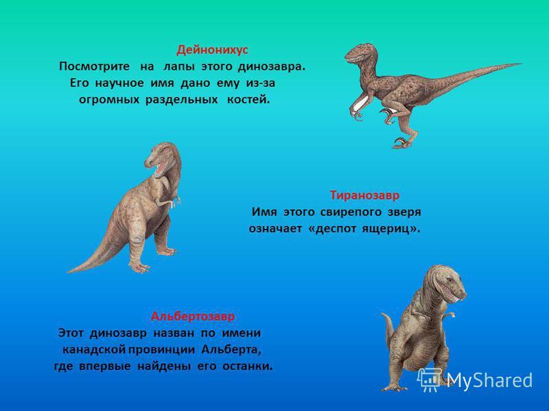 Дейнонихус Посмотрите на лапы этого динозавра. Его научное имя дано ему из-за огромных раздельных костей. Тиранозавр Имя этого свирепого зверя означает «деспот ящериц». Альбертозавр Этот динозавр назван по имени канадской провинции Альберта, где впер