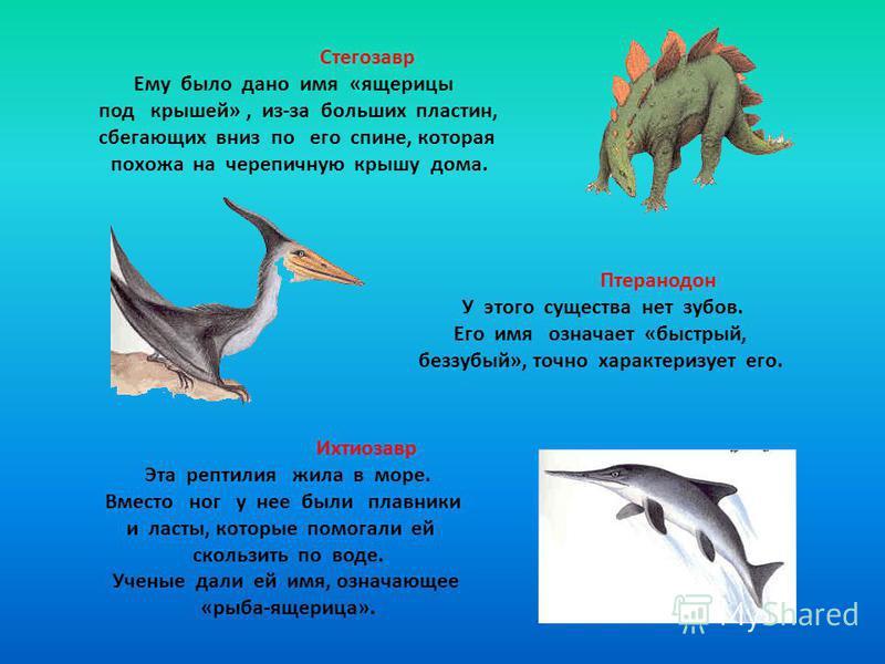 Стегозавр Ему было дано имя «ящерицы под крышей», из-за больших пластин, сбегающих вниз по его спине, которая похожа на черепичную крышу дома. Птеранодон У этого существа нет зубов. Его имя означает «быстрый, беззубый», точно характеризует его. Ихтио