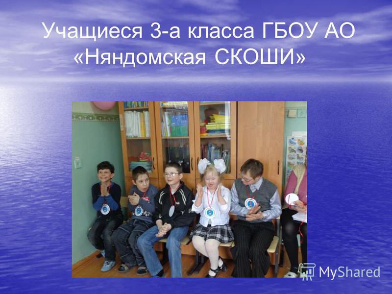 Учащиеся 3-а класса ГБОУ АО «Няндомская СКОШИ»