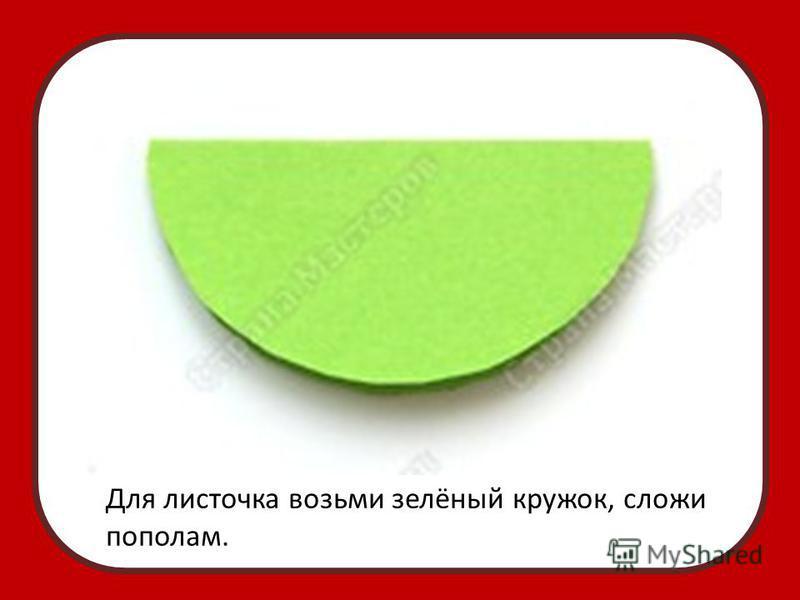 Для листочка возьми зелёный кружок, сложи пополам.
