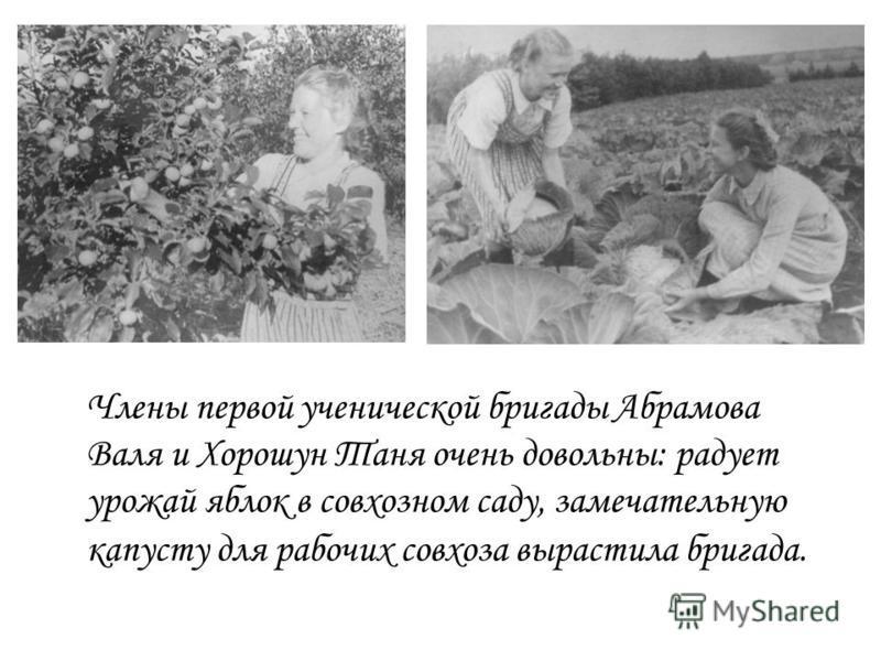 Члены первой ученической бригады Абрамова Валя и Хорошун Таня очень довольны: радует урожай яблок в совхозном саду, замечательную капусту для рабочих совхоза вырастила бригада.
