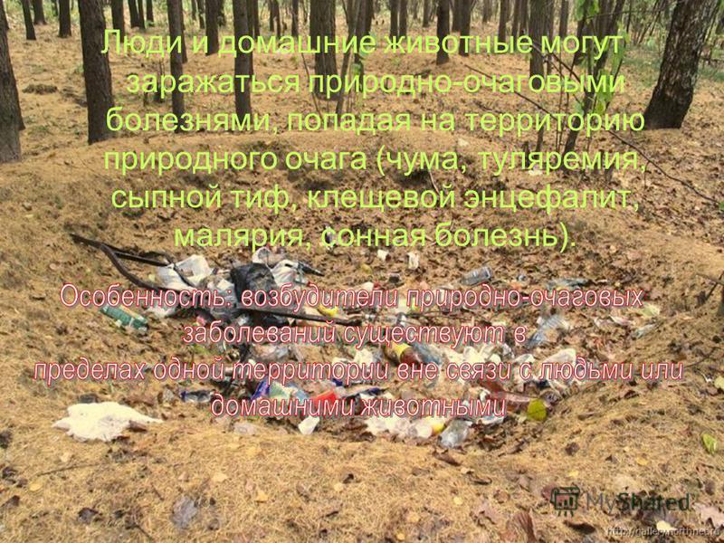Люди и домашние животные могут заражаться природно-очаговыми болезнями, попадая на территорию природного очага (чума, туляремия, сыпной тиф, клещевой энцефалит, малярия, сонная болезнь).