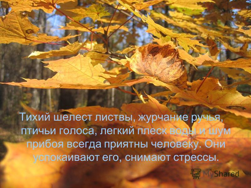 Тихий шелест листвы, журчание ручья, птичьи голоса, легкий плеск воды и шум прибоя всегда приятны человеку. Они успокаивают его, снимают стрессы.