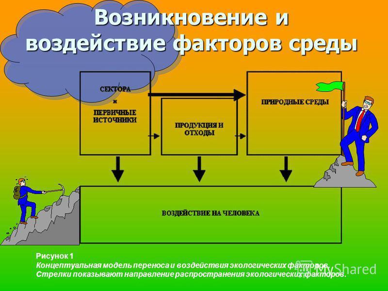 Возникновение и воздействие факторов среды Рисунок 1 Концептуальная модель переноса и воздействия экологических факторов. Стрелки показывают направление распространения экологических факторов.
