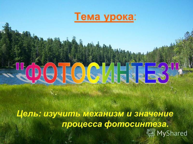 Тема урока: Цель: изучить механизм и значение процесса фотосинтеза.