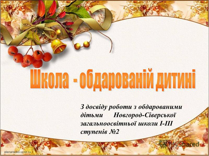 З досвіду роботи з обдарованими дітьми Новгород-Сіверської загальноосвітньої школи І-ІІІ ступенів 2