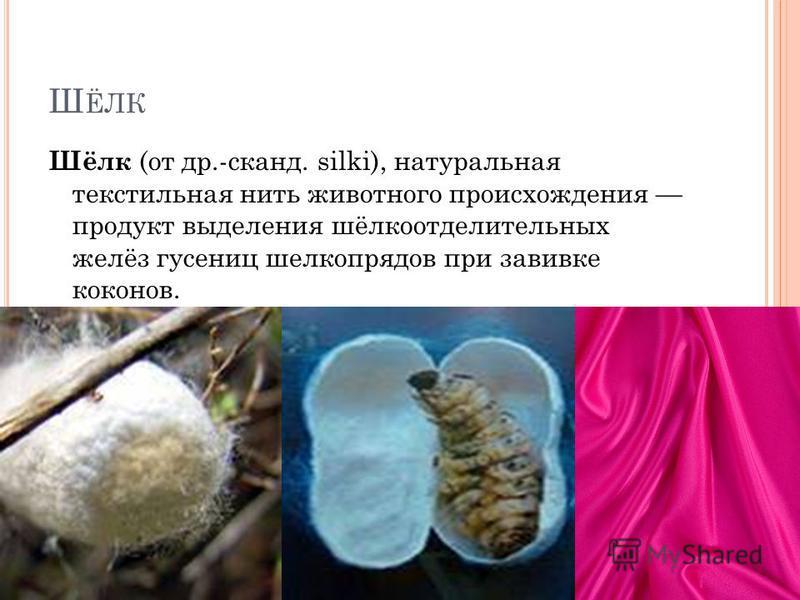Ш ЁЛК Шёлк (от др.-сканд. silki), натуральная текстильная нить животного происхождения продукт выделения шёлкоотделительных желёз гусениц шелкопрядов при завивке коконов.