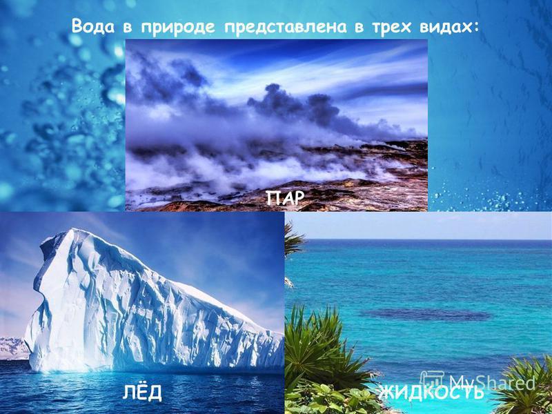 Вода в природе представлена в трех видах: ПАР ЖИДКОСТЬЛЁД