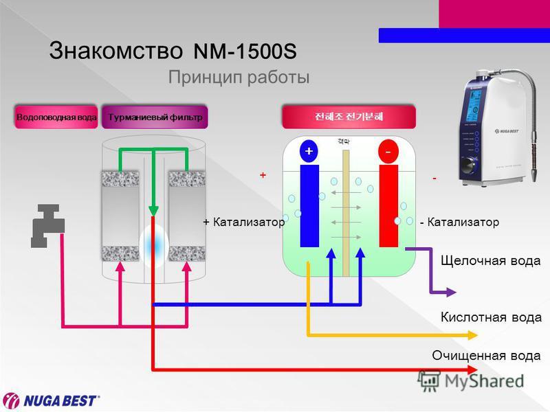 Турманиевый фильтр + - Водоповодная вода + - Принцип работы Знакомство NM-1500S Щелочная вода Кислотная вода Очищенная вода - Катализатор+ Катализатор