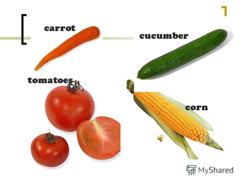 carrot cucumber corn tomatoes