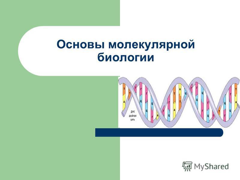 Основы молекулярной биологии