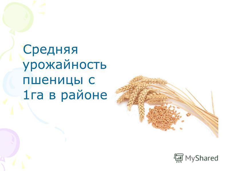 Средняя урожайность пшеницы с 1 га в районе