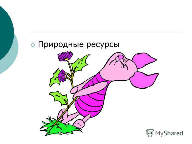 Природные ресурсы