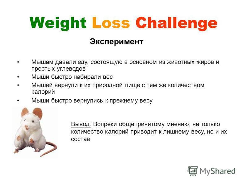 Weight Loss Challenge Эксперимент Мышам давали еду, состоящую в основном из животных жиров и простых углеводов Мыши быстро набирали вес Мышей вернули к их природной пище с тем же количеством калорий Мыши быстро вернулись к прежнему весу Вывод: Вопрек
