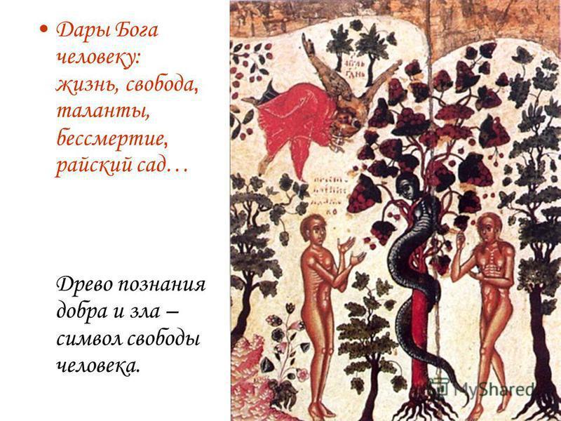 Дары Бога человеку: жизнь, свобода, таланты, бессмертие, райский сад… Древо познания добра и зла – символ свободы человека.