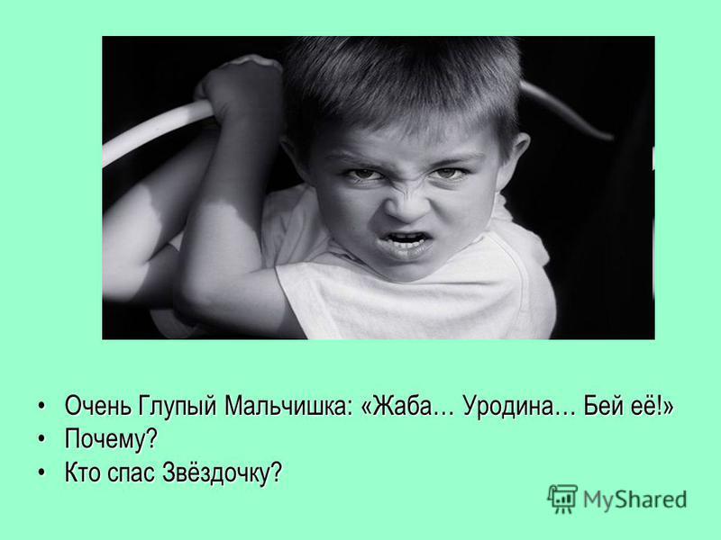 Очень Глупый Мальчишка: «Жаба… Уродина… Бей её!»Очень Глупый Мальчишка: «Жаба… Уродина… Бей её!» Почему?Почему? Кто спас Звёздочку?Кто спас Звёздочку?