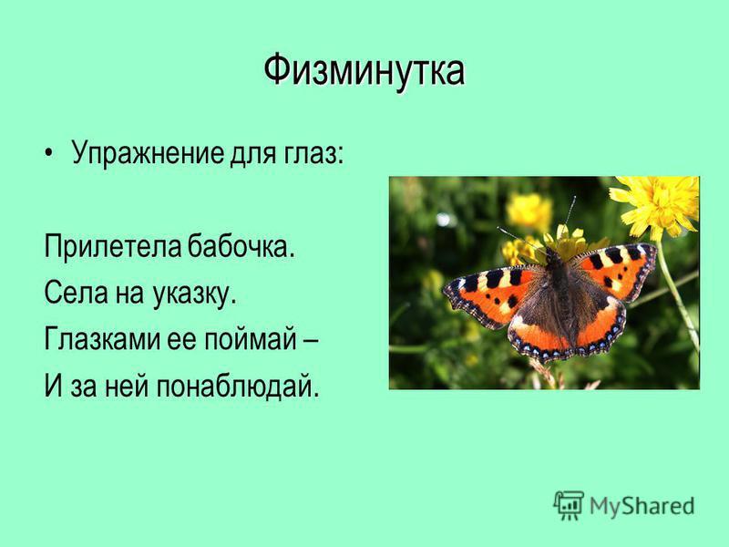 Физминутка Упражнение для глаз: Прилетела бабочка. Села на указку. Глазками ее поймай – И за ней понаблюдай.