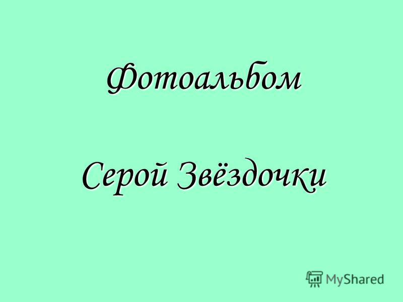 Фотоальбом Серой Звёздочки
